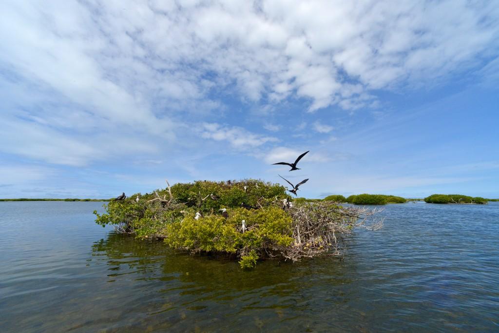 Codrington Lagoon, Barbuda, by Ted Lee Eubanks