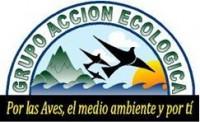 Grupo Accion Ecologica